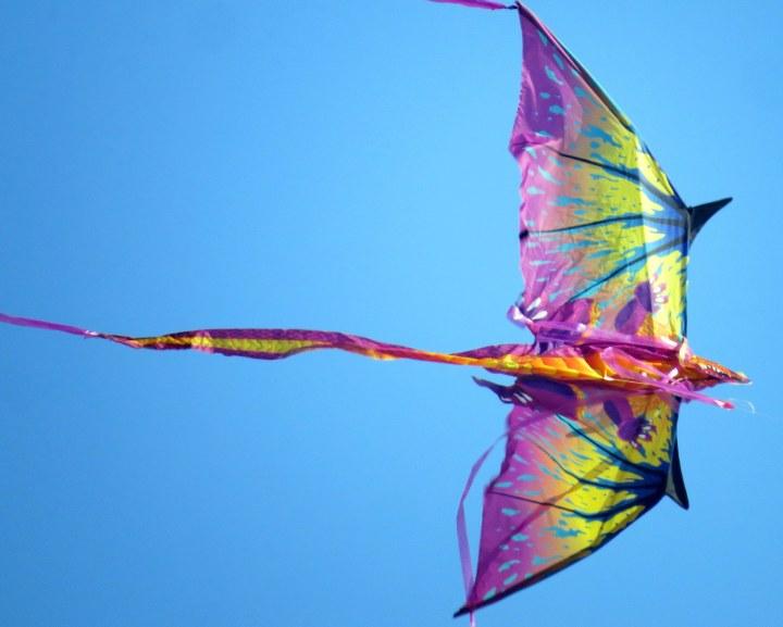 #kite #blueskies