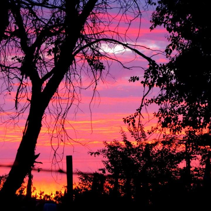 #sunset 4