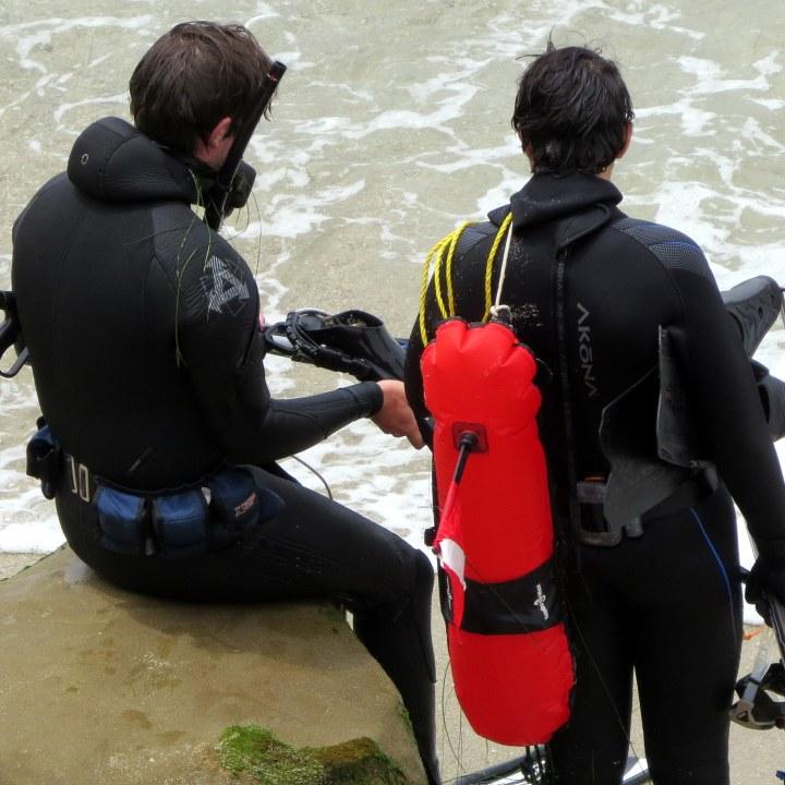 #wetsuit 1